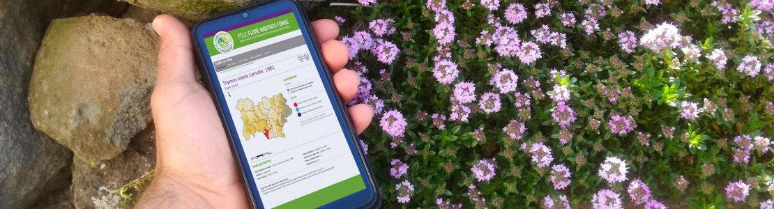 Le Pôle d'information sur la flore, la fonge et les habitats en Auvergne-Rhône-Alpes