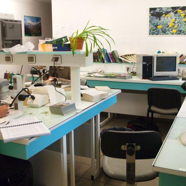 Séance de détermination en laboratoire © S. PERERA / CBNMC