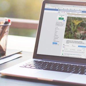 Flux d'information et réseaux sociaux
