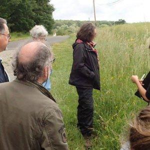 Rencontre avec le réseau d'observateurs botanistes de l'Allier