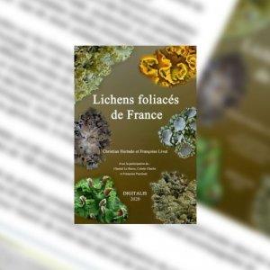 Lichens foliacés de France