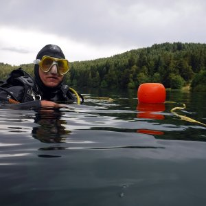 Lac du bouchet : mais où est l'Isoète ?